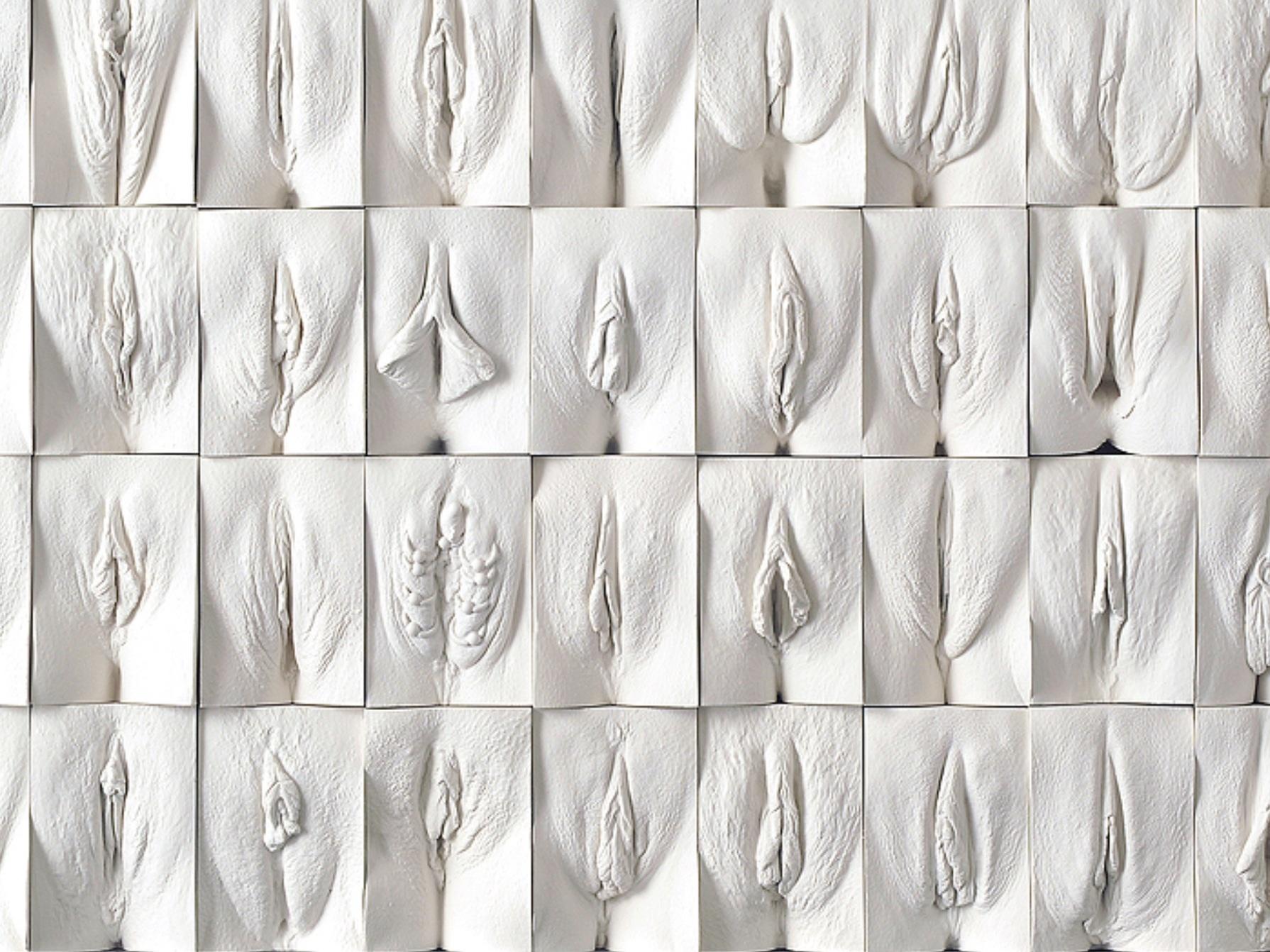 Фото гениталий класыфикация фото женских